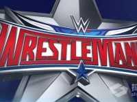 巨石强森明年摔角狂热将对战谁 龙达罗西与巨石强森